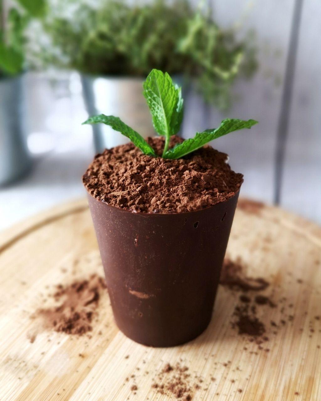 Doniczka z czekolady - spektakularny deser